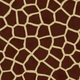 текстура шерсти запятнанная giraffe Стоковая Фотография RF
