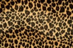 Текстура шерсти леопарда Стоковое Фото