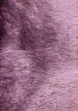текстура шерсти Стоковые Изображения RF