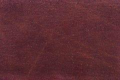 текстура шкурки Стоковое Изображение RF