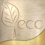 Текстура экологичности березы вектора светлая деревянная бесплатная иллюстрация