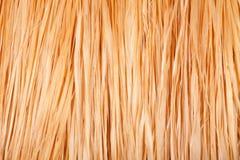 текстура юбки травы стоковое изображение rf