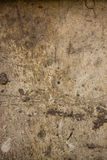 текстура 16 стоковое фото