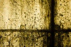текстура 46 Стоковая Фотография RF