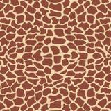 текстура giraffe Стоковая Фотография RF