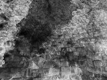 текстура grunge бумажная Стоковое Изображение