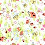 текстура ladybirds травы Стоковые Фотографии RF