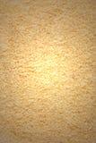 текстура shavings кокоса Стоковые Изображения