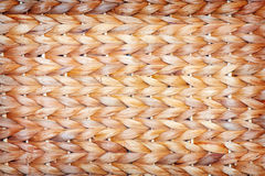 Текстура Wattled Стоковое Фото