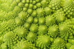 Текстурированная зеленая свежая цветная капуста романск Стоковые Изображения