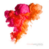 текстурированная иллюстрация фракталей взрыва абстрактного цвета предпосылки цифровая Красочные акриловые чернила в воде Стоковое Изображение