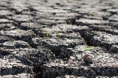 Текстурированная предпосылка сухой треснутой поверхности земли Стоковое Фото