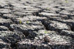 Текстурированная предпосылка сухой треснутой поверхности земли Стоковые Изображения RF