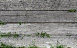 Текстурированная старая деревянная нашивка с зеленой травой стоковое изображение