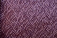 Текстурированная Maroon текстура кожи Стоковая Фотография RF
