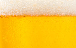 Текстурированное пиво с пеной Стоковые Фото