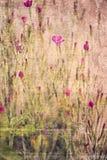 текстурированное флористическое предпосылки стоковые фото