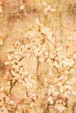 текстурированное флористическое предпосылки стоковая фотография rf
