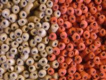 текстурированное цветастое предпосылки Стоковое Фото