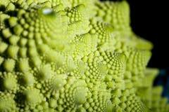 текстурированное romanesco брокколи свежее Стоковое Изображение