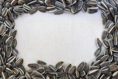 Текстурированные семена подсолнуха рамки Стоковое Изображение