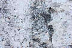 Текстурированные стены с грязью стоковые изображения