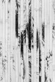 Текстурированный бамбуковый конец-вверх обоев, предпосылка природы Стоковое Изображение