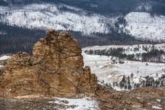 Текстурированный утес на предпосылке леса зимы Стоковые Изображения