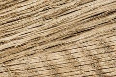 текстурирует деревянное Стоковые Изображения
