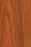 текстурируйте древесину грецкого ореха Стоковое Фото