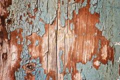 текстурируйте древесину Стоковая Фотография