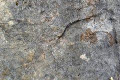 Текстурируйте камень Стоковая Фотография RF