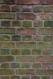 текстурируйте стену Стоковые Фото