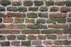 текстурируйте стену Стоковое Изображение RF