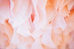 Текстурируйте цвет шифоновой ткани розовый стоковые фотографии rf