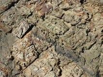 Текстуры береговой породы стоковое изображение