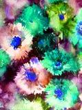 Текстуры ветви цветения полевых цветков астры предпосылки конспекта искусства акварели мытье флористической влажное запачкало фан Стоковая Фотография