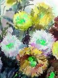 Текстуры ветви цветения полевых цветков астры предпосылки конспекта искусства акварели мытье флористической влажное запачкало фан Стоковые Изображения