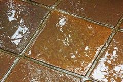 Текстуры и красочные отражения Брайна и золотых на плитках Стоковая Фотография RF