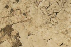 Текстуры камня Стоковые Фото