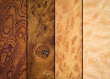 Текстуры древесины разнообразия Стоковое Изображение RF