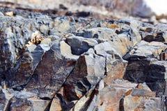 Текстуры утеса национального парка Saguaro Стоковое Изображение