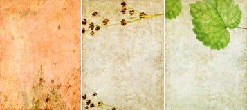 текстуры 3 предпосылки симпатичные Стоковая Фотография