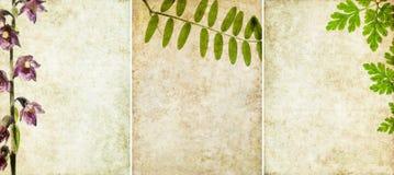 текстуры 3 предпосылки симпатичные Стоковая Фотография RF