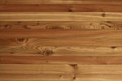 текстуры sibirica larix стоковые фото