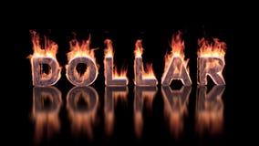 Текст доллара горя в пламенах на лоснистой поверхности Стоковые Фото