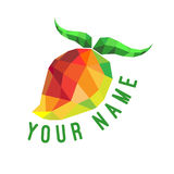 Текст кубизма манго Стоковое Изображение