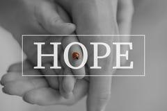 Текст надежды над схематическим изображением Стоковая Фотография