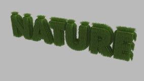 текст природы 3d Стоковые Фото