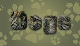 текст собаки меховой Стоковое Изображение RF